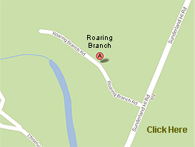 directions to roaring branch cabin rentals in sunderland/arlington vermont